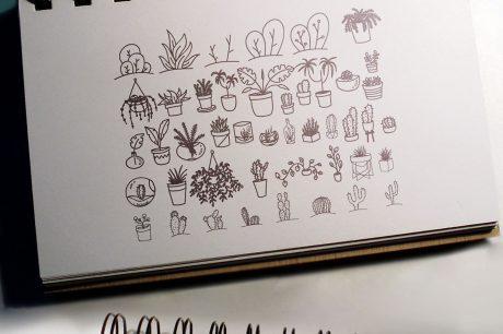 100 Boho-Chic Plants and Leaves Vectors - Mega Pack