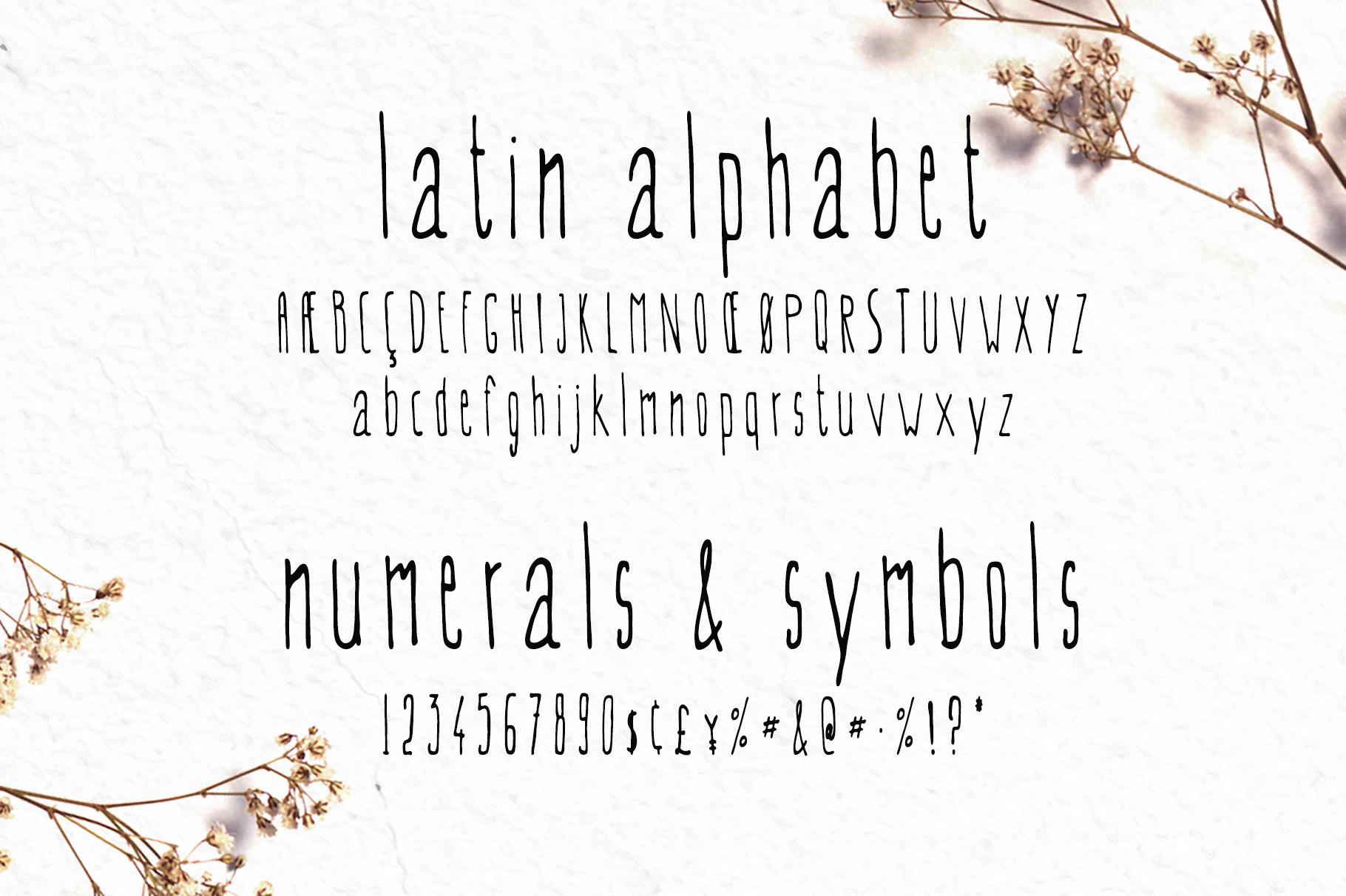 EVEY Handcrafted Multilingual Font | Latin / Greek ...
