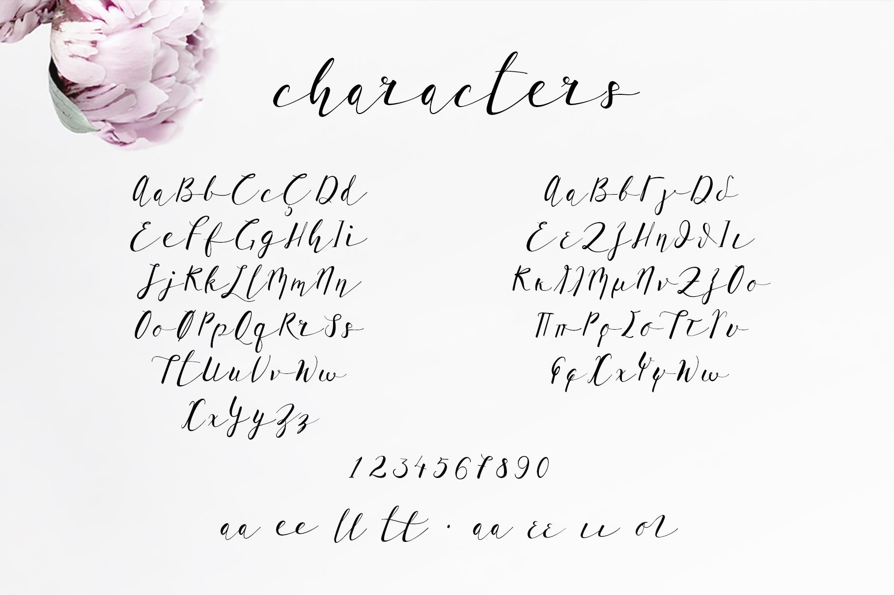 lil u0026 39 baby script font  a romantic  modern calligraphy